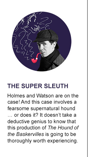 The Super Sleuth